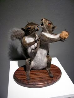 Taxidermy never ceases to amaze us at moggit. ;)