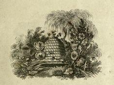 Printable ~ Engraved illustration, Honey Bees, skep, 1822