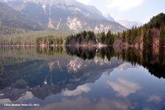 """נוף גדות אגם תובל - """"לשים את האושר בפוקוס"""", צילום תרפויטי ופסיכולוגיה חיובית http://www.focus-on-happiness.com/?p=641"""