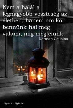 Norman Cousins ​​thought of loss.- Norman Cousins gondolata a veszteségről. A kép forrása: Kapcsos könyv Norman Cousins ​​thought of loss. Words Quotes, Life Quotes, Favorite Quotes, Best Quotes, Smoothie Fruit, Dont Break My Heart, Faith Hope Love, Positive Life, My Heart Is Breaking