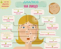 Согласно китайской медицине, которой более 5 тысяч лет, лицо – зеркальное отражение здоровья. По состоянию пяти зон лица можно приблизительно определить состояние органов тела.