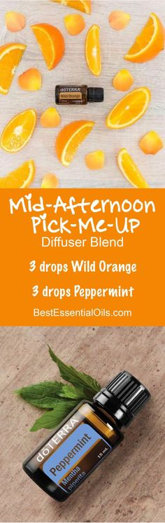 doTERRA Peppermint Essential Oil Uses w/ Recipes - Best Essential Oils Peppermint Essential Oil Uses, Wild Orange Essential Oil, Doterra Essential Oils, Doterra Peppermint, Doterra Blends, Pure Essential, Essential Oil Diffuser Blends, Doterra Diffuser, Aromatherapy Diffuser
