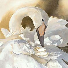 Jeanne Bonine Giclee | Fine Art, Watercolor Painting