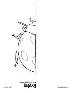 coloring page ladybug  10 free symmetry art activities