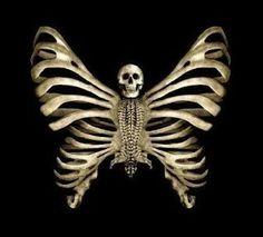Eugène Feuillâtre - Bones & Butterfly
