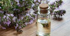 Il timo è una potente pianta terapeutica che può migliorare notevolmente la nostra salute generale e offrire numerosi benefici