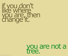 A good reminder...if you don't like where you are, then change it; you are not a tree.