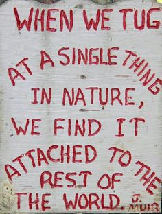 When we tug at a single thing in nature, we find it attached to the rest of the world. so true. Camp Quotes, Hiking Quotes, Bible Quotes, Words For Bad, Cool Words, Wise Words, Deep Truths, Love Truths, Great Quotes