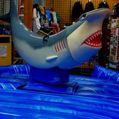 Bucking shark at Kitty Hawk Surf Co. Nags head, NC