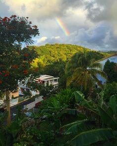"#Madinina vue par @anais_celerien: ""Good Morning Martinique . #Martinique #Mada #Fwi #Island #FortDeFrance #Morning #SmallRainbown #Nature #Coconut #Caribbean #Travel #Clouds #NoFilter #WakeUp #ig_martinique"" #WeLike ! A voir sur Instagram : http://ift.tt/1WfdiaE"