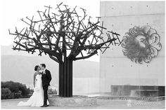 If you are planning your Cape Town Destination Wedding, see some others we have done recently: Intimate Cape Town Destination Wedding Coupe that eloped to Cape Town Destination Wedding, Wedding Venues, Wedding Venue Inspiration, Cape Town, Zara, Wedding Photography, Mountains, Amazing, Blog