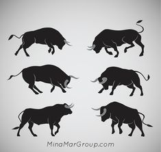 Bull market is market trend when price of assets or securities rise by an opposite from bear market. The term bull market is usual. Bull Pictures, Bull Images, Bull Tattoos, Taurus Tattoos, Toro Vector, Animals And Pets, Cute Animals, Ship Drawing, Raging Bull