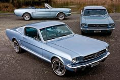 1965 Ford Mustang. During 1965 model year, Ford sold a record 680,989 Mustangs in the 3 body styles shown here (including 562 Shelbys)