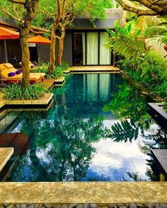 Fun Backyard Landscaping Idea How About An Exotic, Tropical Backyard Resort 72 - topzdesign . Natural Swimming Pools, Outdoor Swimming Pool, Natural Pools, Natural Garden, Tropical Backyard, Backyard Landscaping, Fun Backyard, Tropical Pool Landscaping, Backyard Kitchen