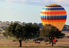 Ballooning in Beja with Emotion Portugal - Alentejo, Portugal