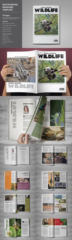 #magazine #design from voryu | DOWNLOAD: https://creativemarket.com/voryu/329019-Wildlife-Magazine-Template?u=zsoltczigler
