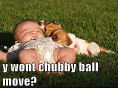 Chubby Ball