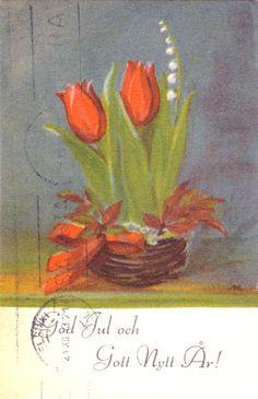 AKSELI EINOLA - 106951943635258866150 - Picasa-verkkoalbumit