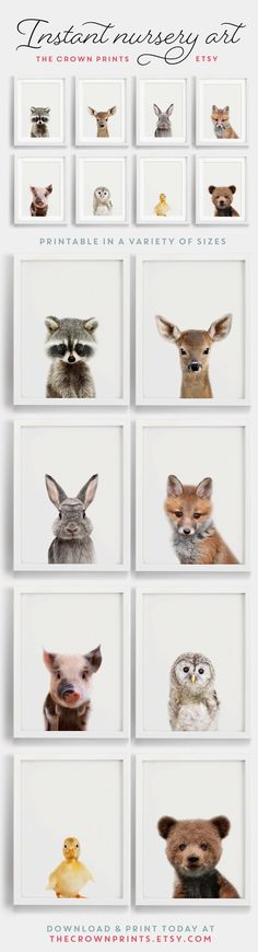 Nursery wall art, Set of Nursery decor, Modern Safari nursery decor, Safari nursery prints, Anima Woodland Animal Nursery, Safari Nursery, Woodland Animals, Nursery Wall Art, Girl Nursery, Baby Animal Nursery, Woodland Art, Nursery Decor Boy, Nursery Design