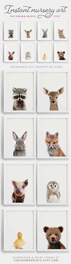 Animal art.