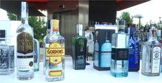 Mi crónica del V Gin Show de Madrid