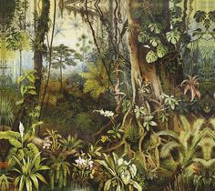 Amazzonia by Inkiostro Bianco 60s Wallpaper, Scenic Wallpaper, Mural Art, Wall Murals, Wall Art, Botanical Illustration, Illustration Art, Jungle Art, Tropical Art