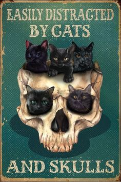 Easily distracted by cats and skulls poster Crazy Cat Lady, Crazy Cats, I Love Cats, Cute Cats, Recetas Halloween, Memes Arte, Black Cat Art, Black Cats, Family Canvas