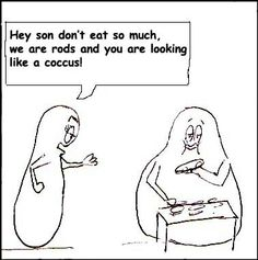Microbiology humor ..shapes