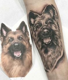 Here we have compiled some of the most beautiful dog tattoos. Tell us which one you like best, or if you have a dog tattoo too, you can share it with us. Dog Tattoos, Cute Tattoos, Tattoos For Guys, Tatoos, German Shepherd Tattoo, Boston Tattoo, Animal Tattoos For Men, Most Beautiful Dogs, Dog Quotes