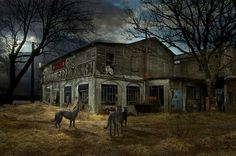 "Scottish deerhounds. ""Twilight"" (visuels XAO). Photocompositing by Marie-Lise Robert."