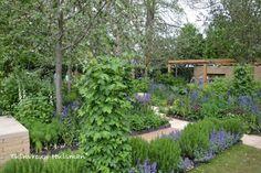 The Homebase Garden ontworpen door Adam Frost Chelsea Flower Show 2013