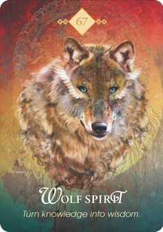 FREE Online Oracle Card APP – You And The Universe : Spirit Animal Oracle nr 67 : Wolf Spirit Turn knowledge into wisdom Protection Message: What is unknown is still yet to be discovered. When Wolf Spirit appears, you are being told not to pretend you k Spirit Animal Quiz, Spirit Animal Totem, Wolf Totem, Animal Spirit Guides, Animal Totems, Animal Meanings, Animal Symbolism, Animal Espiritual, Pet Psychic