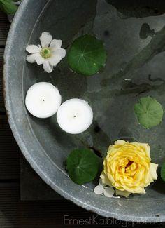 ErnestKa: Miniteich mit Rose, Anemone und Kapuzinerkresseblättern