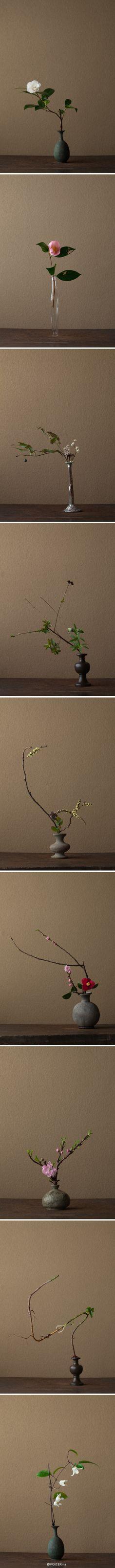 'Ikebana' and 'Kado', traditional flower arrangement in Japan - 生け花, 華道, 日本 Ikebana Flower Arrangement, Ikebana Arrangements, Flower Vases, Floral Arrangements, Japanese Flowers, Japanese Art, Japanese Culture, Japanese Style, Sogetsu Ikebana