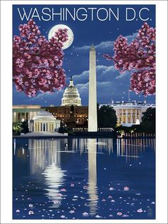 Amazon.com: Washington, DC - Night Scene (12x18 Art Print Wall Decor): Posters & Prints