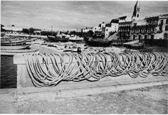 Port de Palamós ( Girona). 1942. Autor desconegut. 27647F MMB Costa, Louvre, Building, Travel, Angler Fish, Author, Viajes, Buildings, Destinations