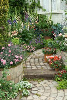 Garden path with raised bed borders of Dianthus, Digitalis, Aquilegia, Paeonia, containers of Antirrhinum, Alyssum, house window, Iris, evergreens, Alchemilla, hosta, pots, mixed plantings