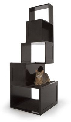 Sebastian Modern Cat Tree (Cat Trees): Finally, a cat tree that looks great in your home! This beautiful modern cat tree is a lovely addition to your home, but is also a functional space for your cat with areas for scratching, resting, hiding and exercisi Cat Design, Animal Design, Cat Perch, Cat Towers, Cat Shelves, Cat Scratching Post, Cat Room, Pet Furniture, Cat Supplies