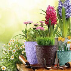 Dantel Saksılar / Lace Pots Bahçeler, balkonlar dantelin estetiği ile şenlenecek. #lacedesign #colors #garden