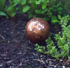 Garden penny ball. Made from a bowling ball and pennies. Supposed to repel slugs but I like it because of the pennies from heaven story on my Angels board.