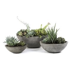 Set of 3 Eco-concrete Yano Planter                                                                                                                                                                                 More