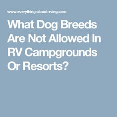 What Dog Breeds Are Not Allowed In RV Campgrounds Or Resorts?