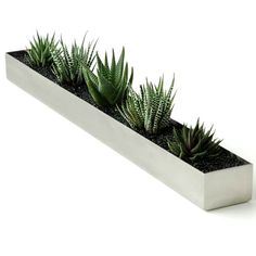 "Gus Modern - Gus Modern Fruit Trough - Make a fresh statement in your home with this sleek trough. Maybe ""home decor"" and ""trough"" don't exactly go together, but this modern piece is the perfect place to store your fruit, herb plants and kitchen tools. Contemporary Planters, Modern Planters, Outdoor Planters, Indoor Outdoor, Decorative Planters, Contemporary Furniture, Rectangular Planter Box, Trough Planters, Wood Planters"