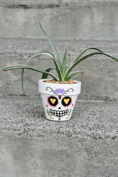 Day of The Dead Sugar Skull: FELIPE! Hand Painted Flower Pot Ceramic For Your Artistic Home!