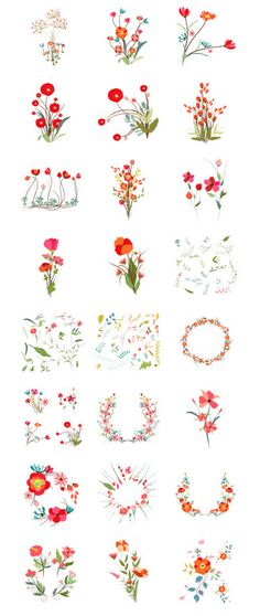 Set of botanical graphic elements! http://www.istockphoto.com/search/portfolio/10469470/?facets=%7B%2225%22%3A%226%22%7D#a20e24f