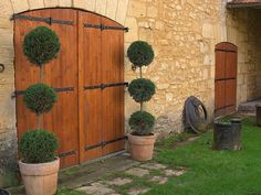Rustic charm - Topiary conifers planted in rustic pots make a gorgeous feature for entrance ways.