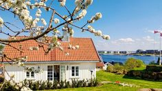 Traditional Cottage in Tønsberg, Norway