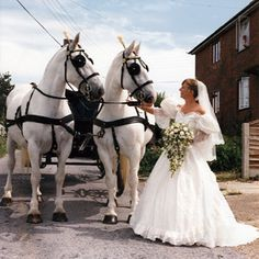 A horse drawn carriage would be just lovely!