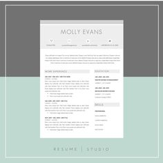 Resume Template  Cover Letter  Cool Resumes Cover Letter Resume