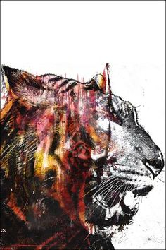Alex Cherry Bloodbeat II Fine Art Print by Alex Cherry